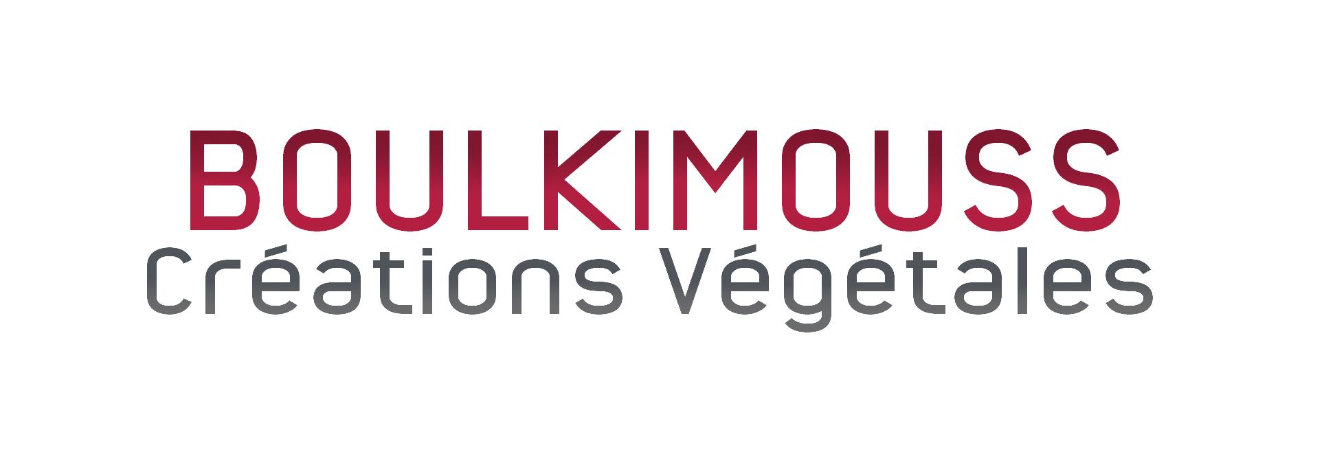Boulkimouss